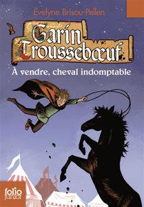 Image de Garin Trousseboeuf Volume 8, A vendre, cheval indomptable