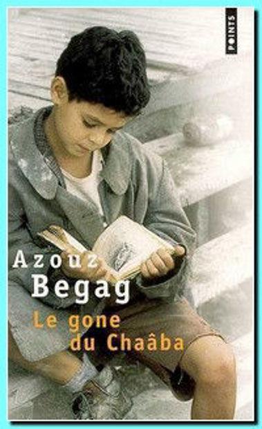 Image de Le gone du Chaâba