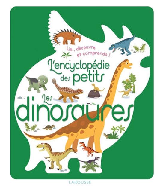 Image de Les dinosaures : lis, découvre et comprends !